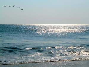 The beautiful Outer Banks...my favorite photograph from 2012.