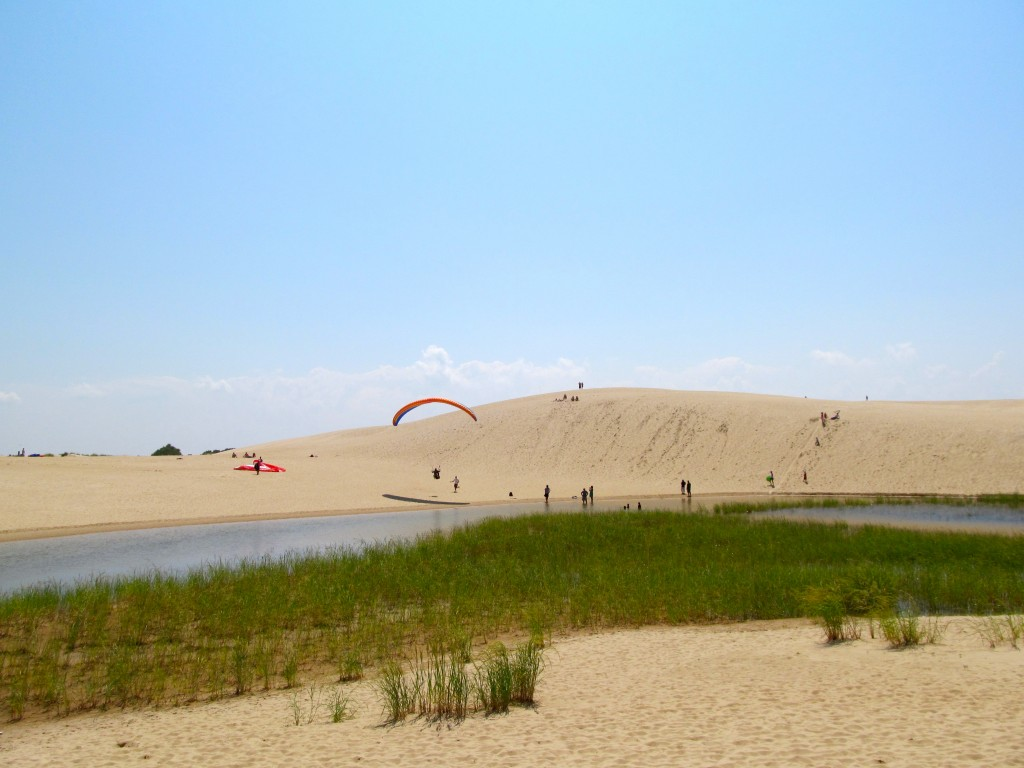 Fun for all - hang gliders, sand boarders and hikers.