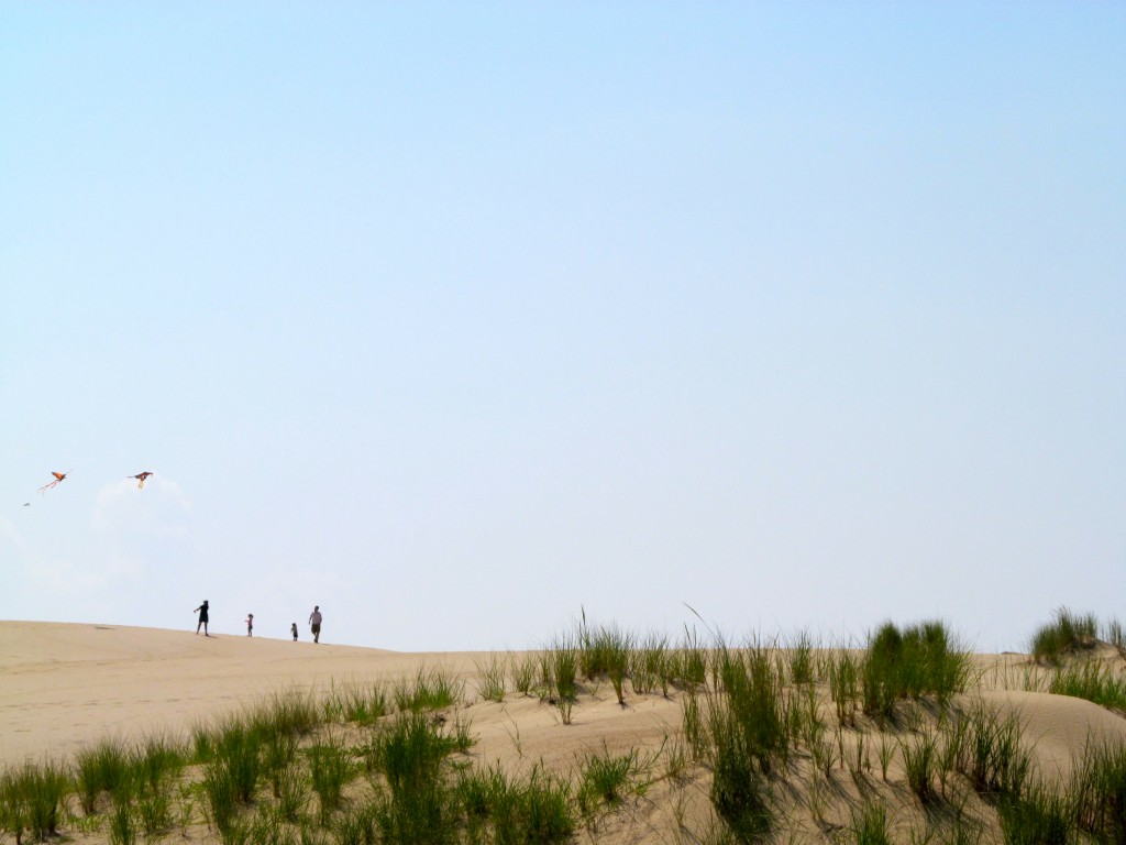 Kite flying at Jockey's Ridge on top of the sand dunes.